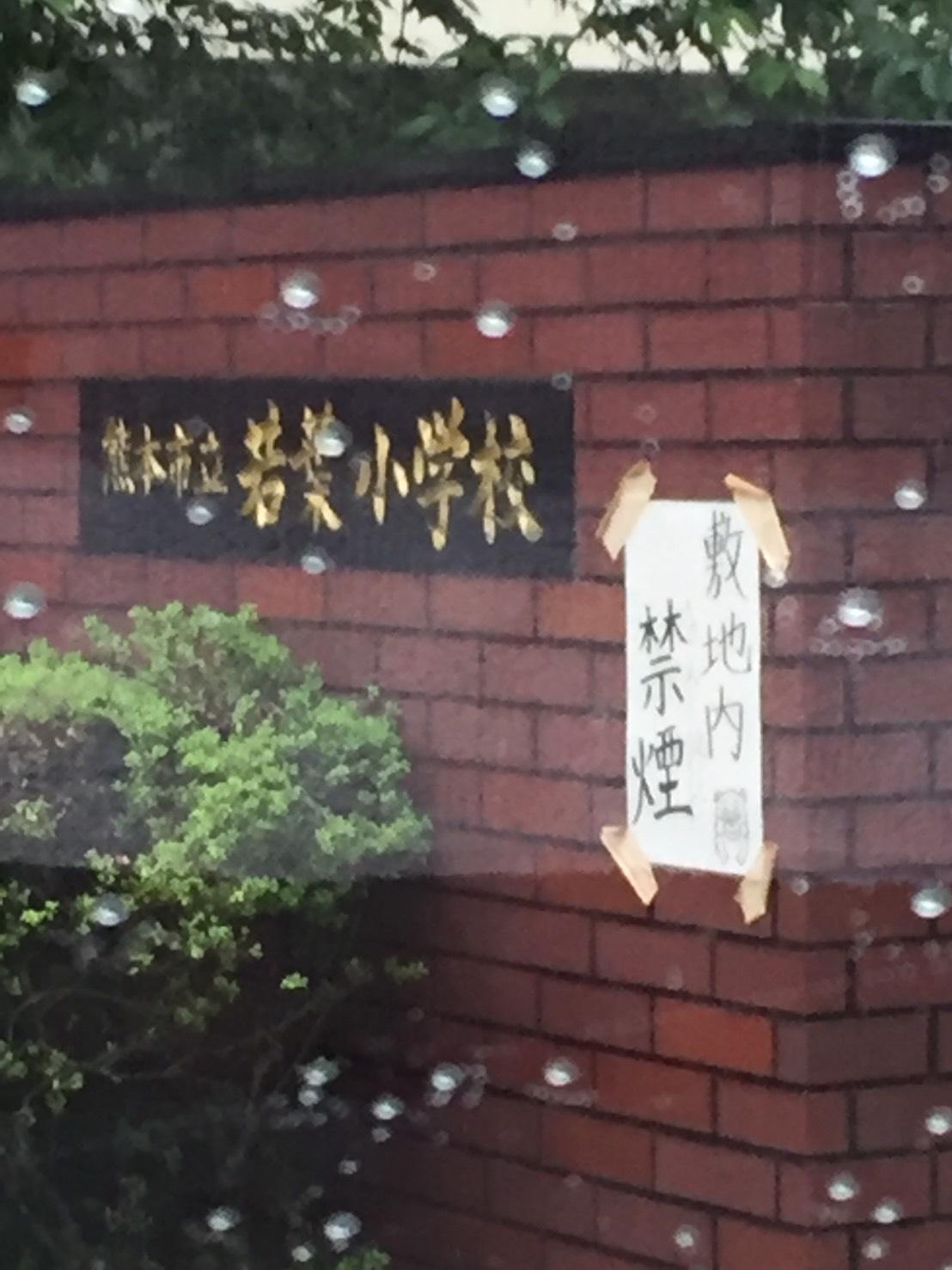 http://www.kickbackcafe.jp/support2/report/S__5202011.jpg